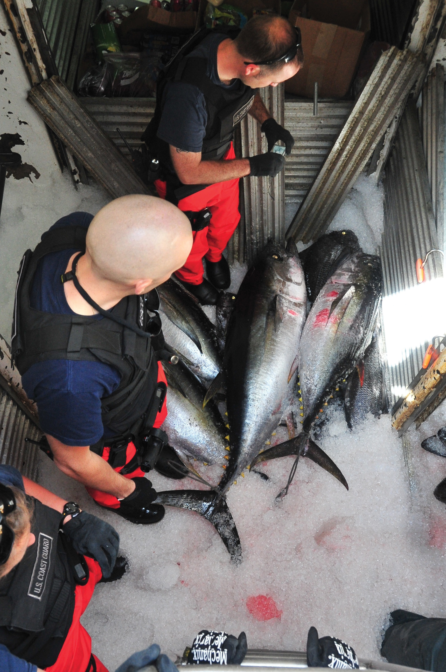 Boarding team members from Coast Guard Cutter Waesche inspect the refrigeration compartment of the fishing vessel Mariah