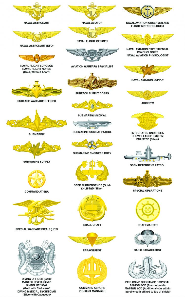 BJM Warfare and Qualification Insignia